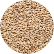 Солод Pilsner malt, Viking malt